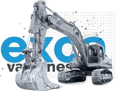 Excavaciones en Leon_Dytiga